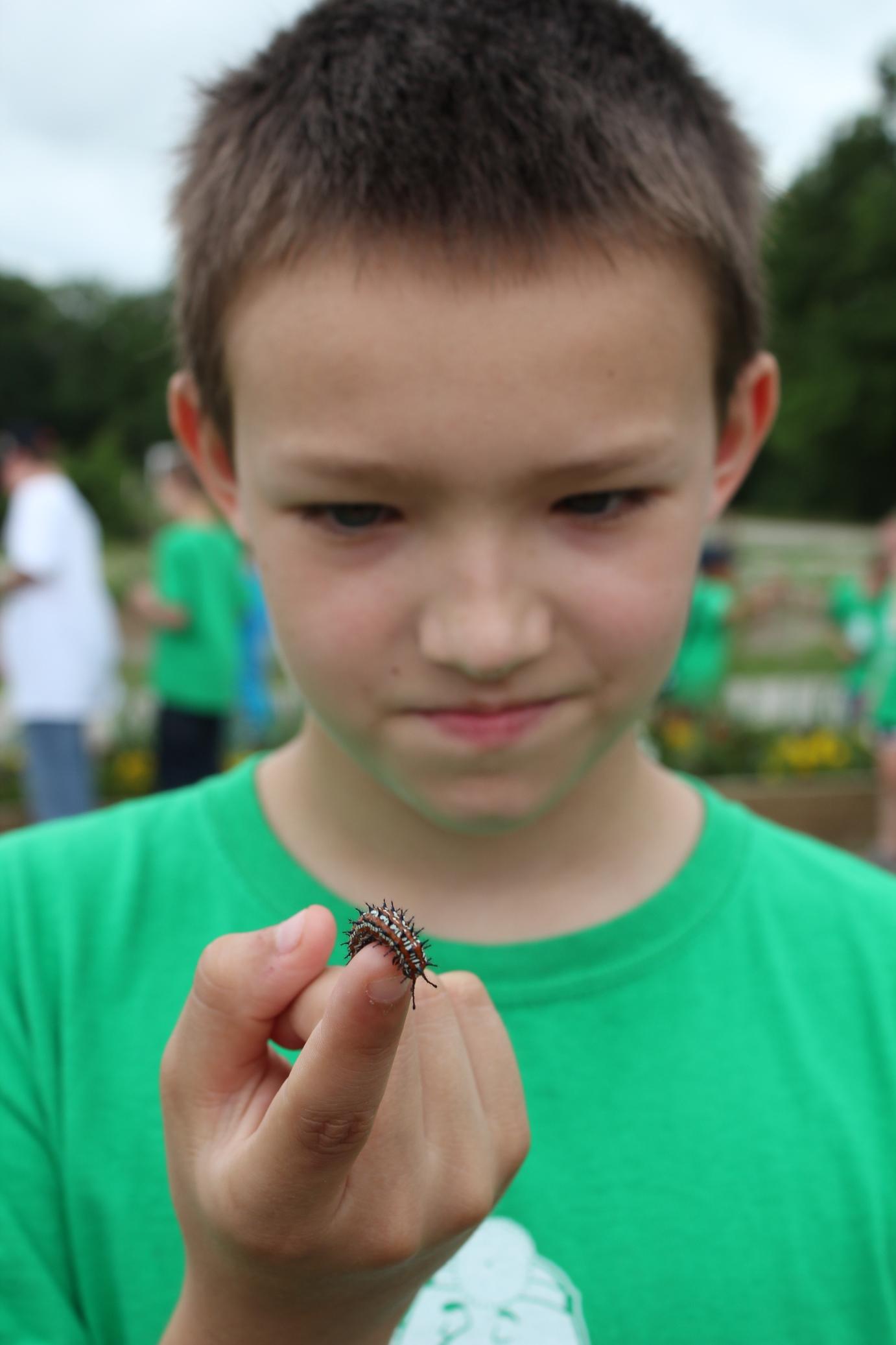 Ten-year-old Sean Higdon, Ada, checks out a caterpillar at the Chickasaw Nation Community Gardens during Environmental Camp.
