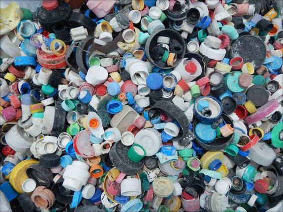 Some of the 4781 bottle caps collected from Midway Atoll shorelines by a 9-member team from the PIFSC Coral Reef Ecosystem Division during a cleanup mission in April 2013.Credit: NOAA photo by Kristen Kell
