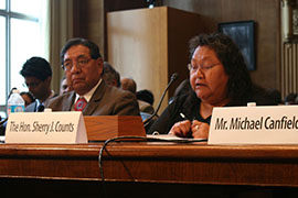 Hualapai Chairwoman Sherry Counts told a Senate committee that the northwestern Arizona tribe supports a bill that would formalize two water-rights agreements between it, Freeport Minerals Corp. and the government.Photo by Julianne DeFilippis