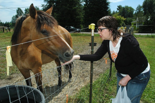 Sienna is fed by Colleen Chamberlain, weekend manager of the All Breed Equine Rez-Q, during its July 12 Kit-N-Kaboodle.— image credit: Kirk Boxleitner