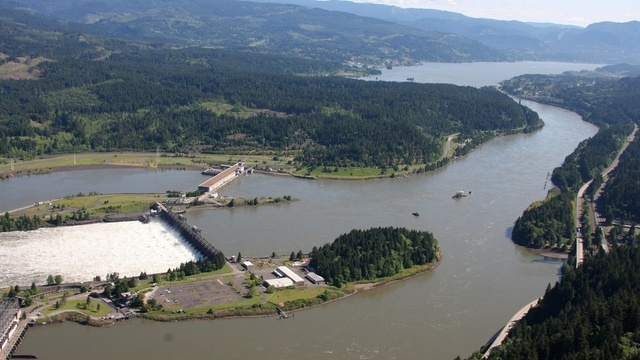 The Bonneville Dam on the Columbia River. A legal settlement requires the Army Corps of Engineers to disclose the pollution that its dams put into the river. | credit: Amelia Templeton