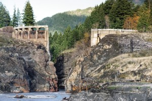 Remains of the Glines Canyon Dam on the upper Elwha River. Photo by James Wengler.