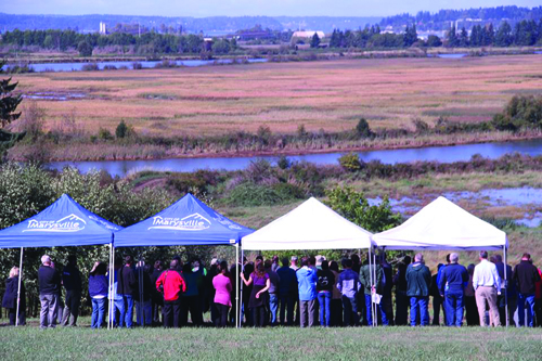 Partners from the Tulalip Tribes and a dozen other agencies and groups, including Marysville, the U.S. Army Corps of Engineers, and NOAA, take in the view of the Qwuloolt Estuary on September 2, 2015. The levee was breached August 28, allowing the return of its native marshland.