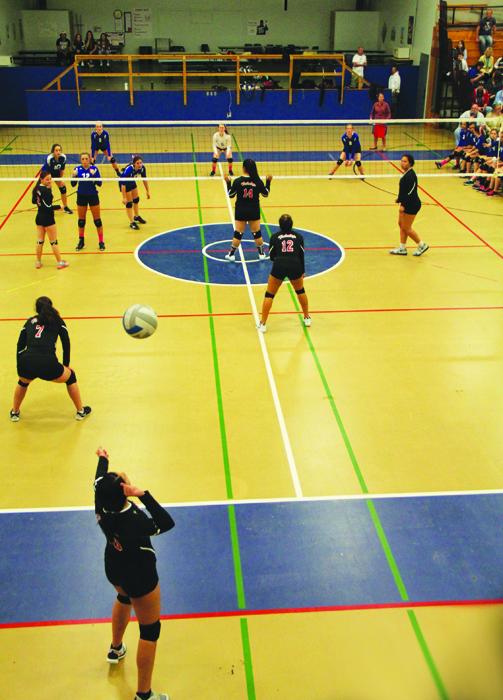 Hawks-volleyball-1