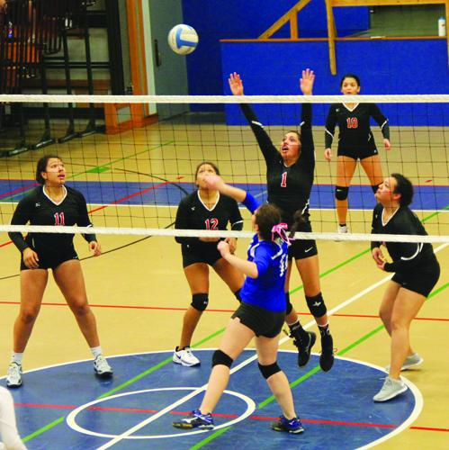 Hawks-volleyball-2