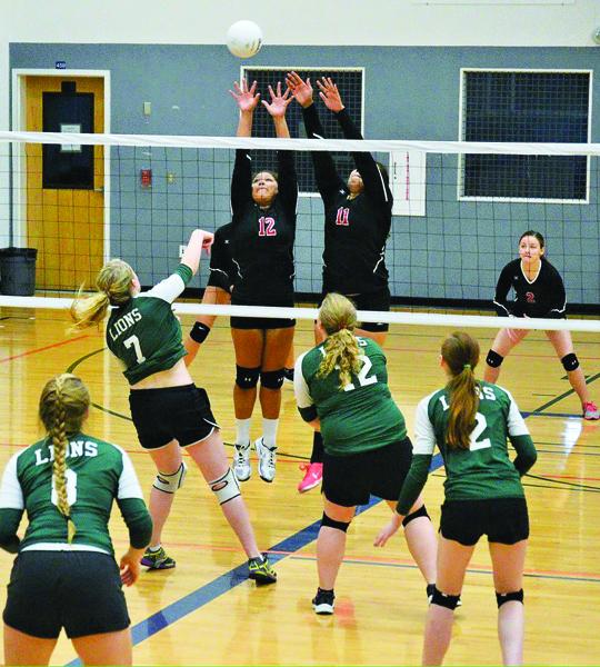 Hawks-volleyball4