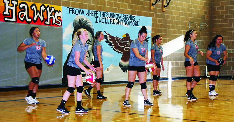 hawks_volleyball1
