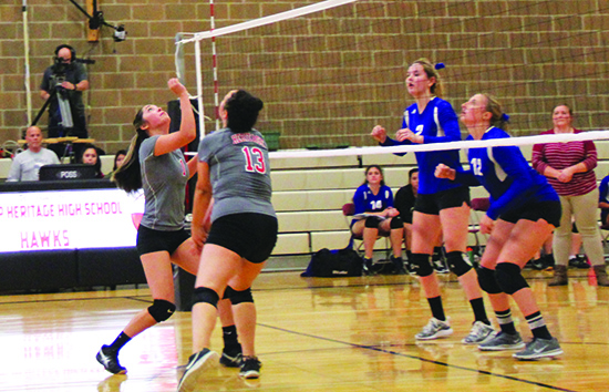 hawks_volleyball2