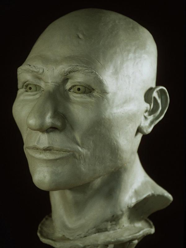 A clay model of Kennewick Man's head (AP)