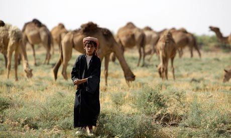 Iraq is among the countries in the Middle East facing severe water shortages. Photo: Ali al-Saadi/AFP