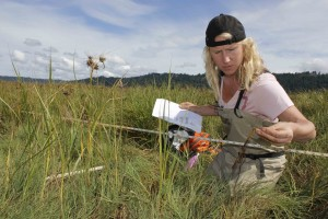 Skokomish Tribe habitat biologist Shannon Kirby takes note of the types of vegetation found in the Skokomish Estuary.