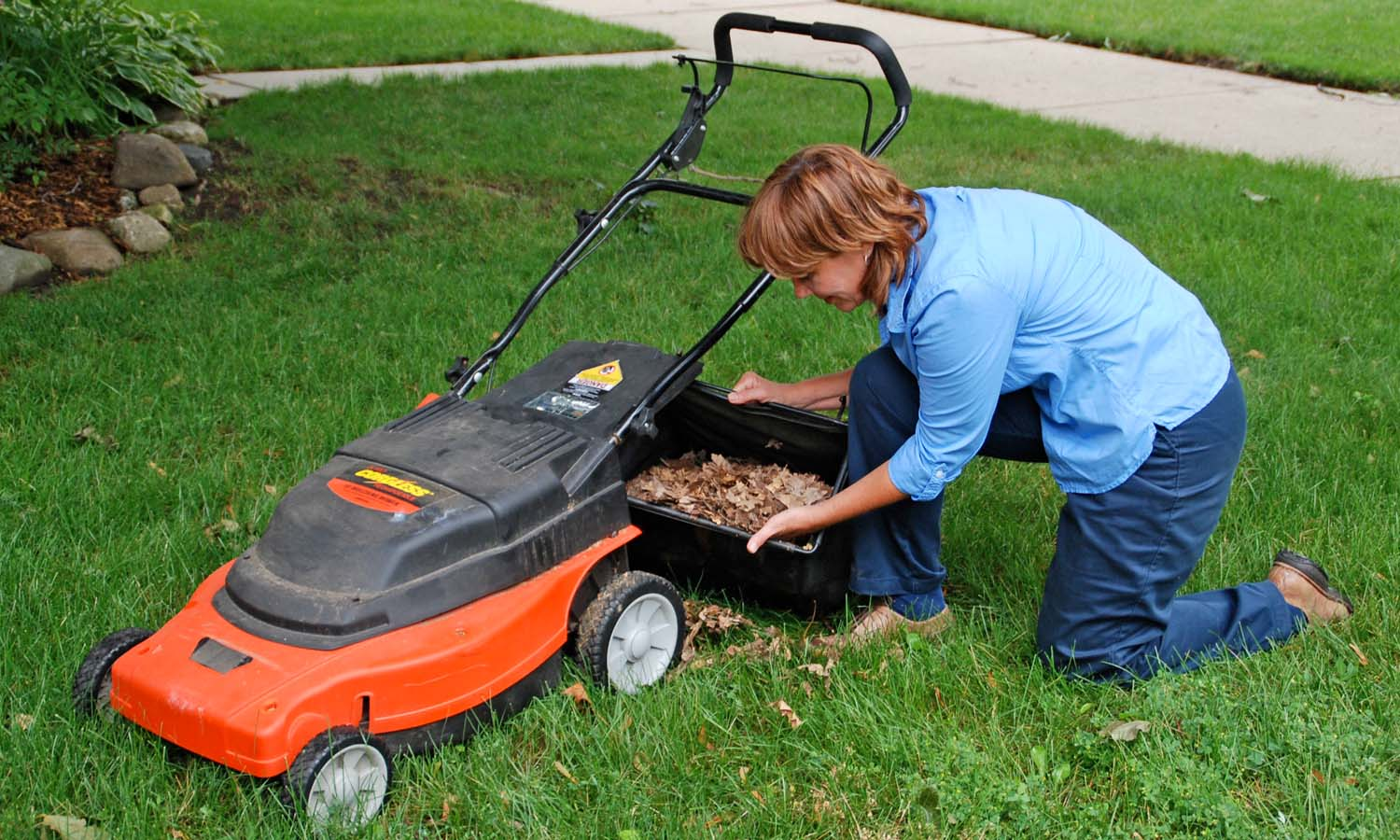 Shredding fall leaves with a mower and spreading a layer over the soil in the garden will conserve moisture and insulate the roots of perennial plants.Photo/Melinda Myers, LLC