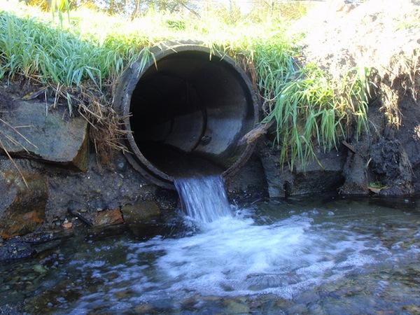 Northwest Indian Fisheries CommissionAlthough much work is being done to restore salmon habitat in the Pacific Northwest—such as replacement and repair of culverts, as pictured above—salmon habitat is being compromised faster than it can be put back together.