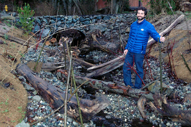 Brett Shattuck, forest and fish biologist for the Tulalip Tribes, stands beside the wood debris that was installed during this fall's restoration of Greenwood Creek to make it a better salmon habitat.— image credit: Kirk Boxleitner