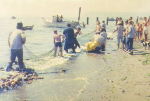 Early Tulalip beach seining photos courtesy of the Tulalip Hibulb Cultural Center Museum.