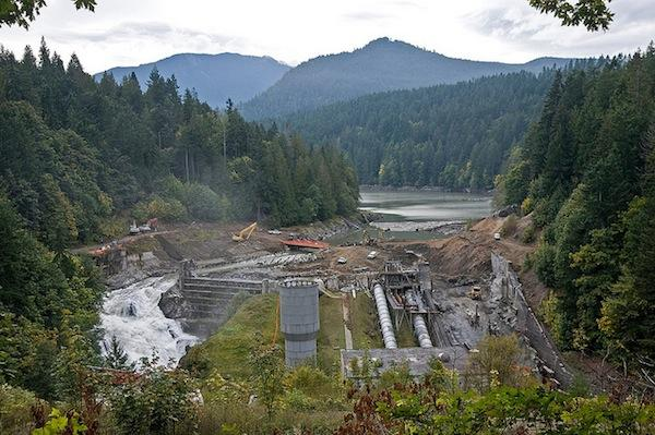 Northwest Indian Fisheries CommissionHabitat restoration efforts such as removal of the Elwha Dam, shown here in process on October 8, 2011, have helped bring back salmon spawning grounds.