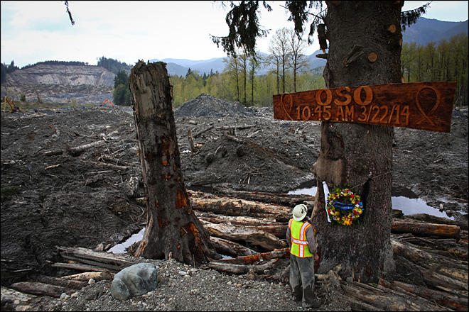 Ben Woodward looks up at a sign commemorating the moment of the Oso mudslide. The wooden memorial was attached to a towering spruce tree, one of the few in the debris field left standing after the disaster. (AP Photo/seattlepi.com, Joshua Trujillo)