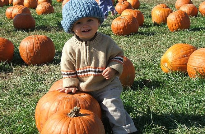 Fox Hollow Family Farm has a bonfire, s'mores and hot chocolate, horse-drawn carriage rides, a hay-bale maze, concessions, and more. (Photo Courtesy: Fox Hollow's Facebook Page)