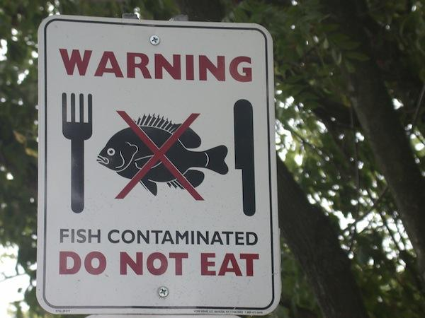 Courtesy Environmental Protection AgencyThe U.S. Environmental Protection Agency will issue water quality rules to uphold certain levels of fish consumption.