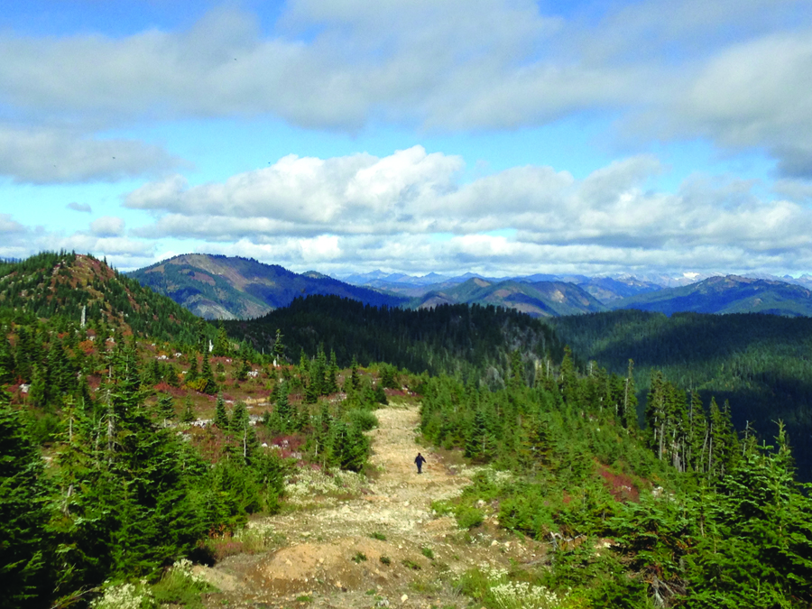 Mount Baker-Snoqualmie National Forest.Photo courtesy Libby Nelson, Tulalip Tribes Natural Resources