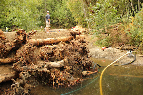 Scott Steltzner, biologist for the Squaxin Island Tribe, inspects a newly constructed logjam in 2013.